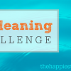 Fall Cleaning Challenge Week 4: Catch Up!
