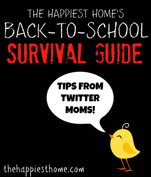 a survival guide for the preschool teacher pdf