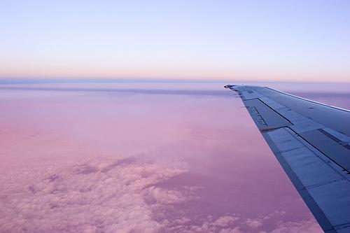 view, airplane, window