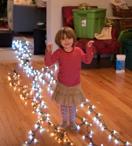 Clara Christmas Lights