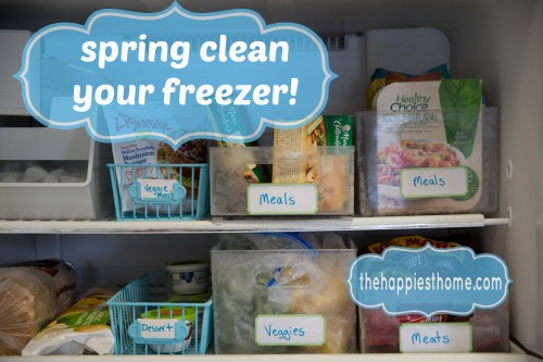 spring-clean-your-freezer-final