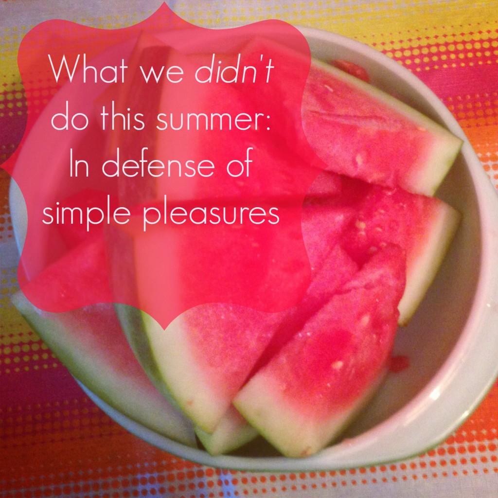 What we DIDN'T do this summer: in defense of simple pleasures