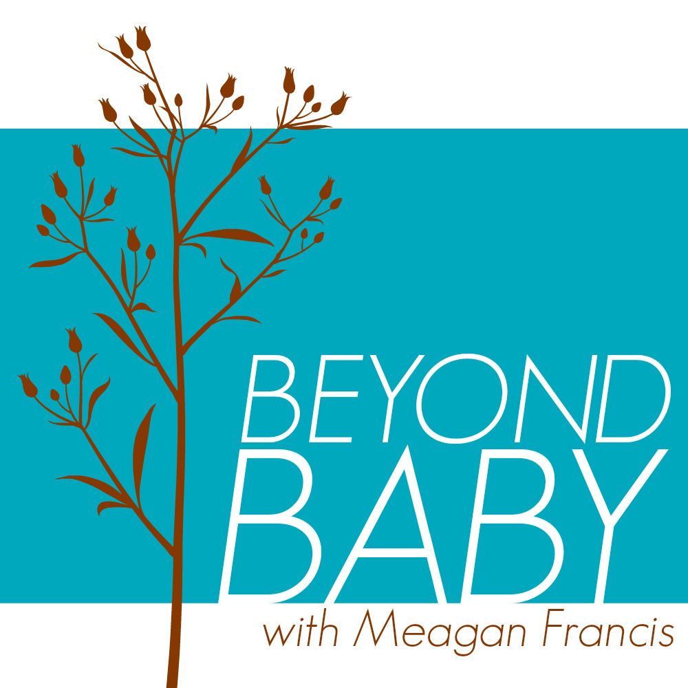 Beyond Baby: a program for moms with