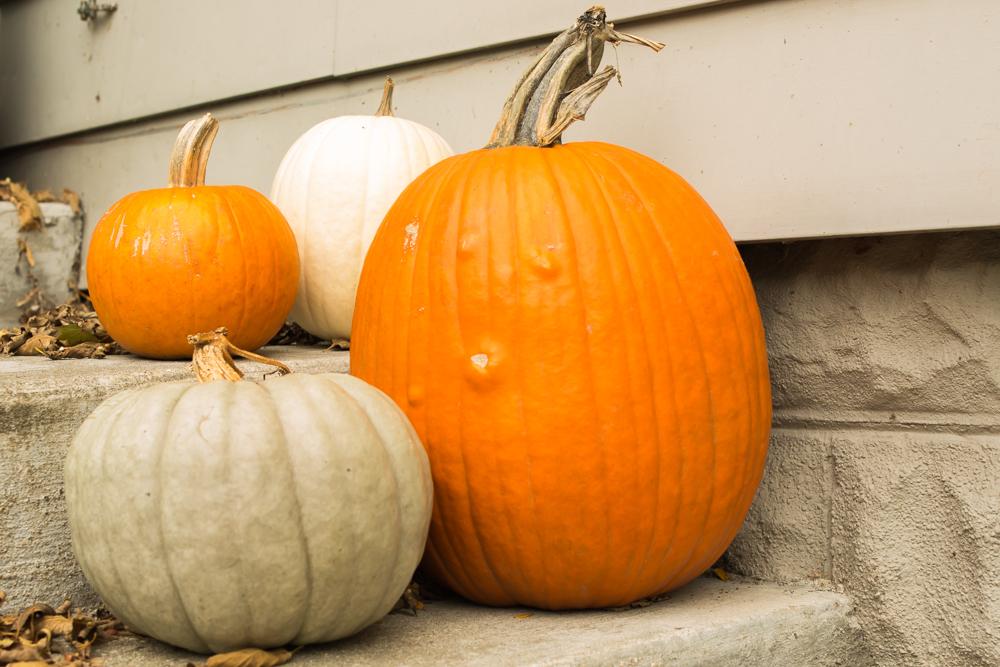 it's OK to leave pumpkins as-is.
