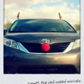 minivan, rudolph nose, antlers
